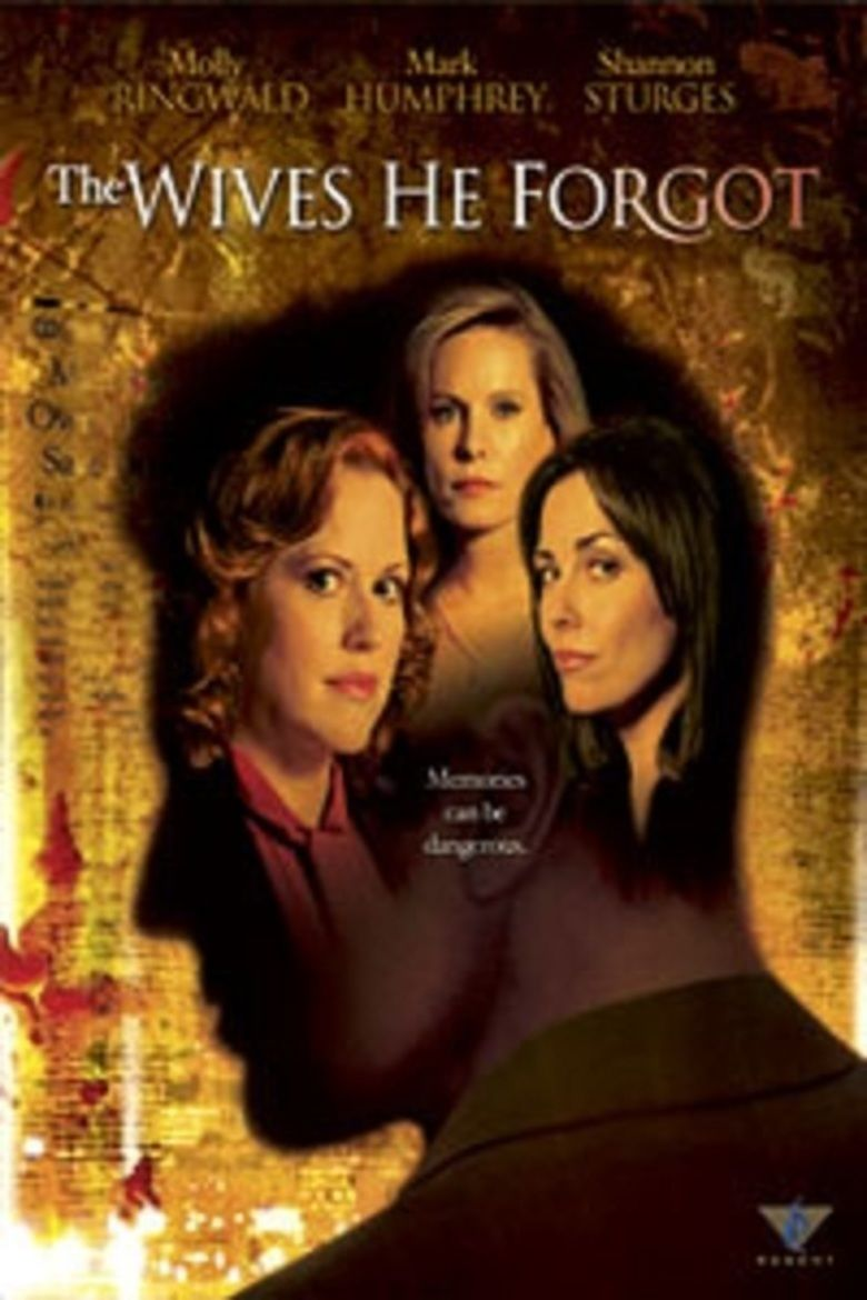 The Wives He Forgot movie poster