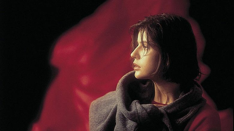 Three Colors: Red movie scenes