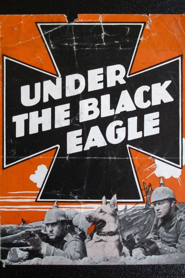 Under the Black Eagle movie poster