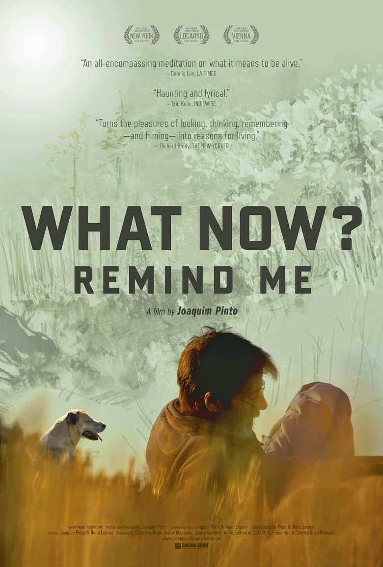 What Now Remind Me movie poster