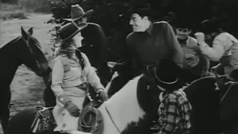 Wild Horse Stampede movie scenes