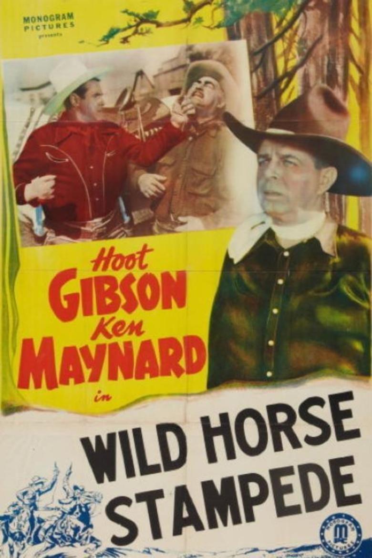 Wild Horse Stampede movie poster