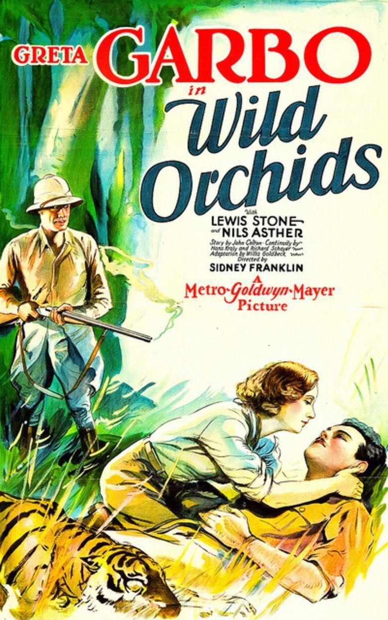Wild Orchids (film) movie poster