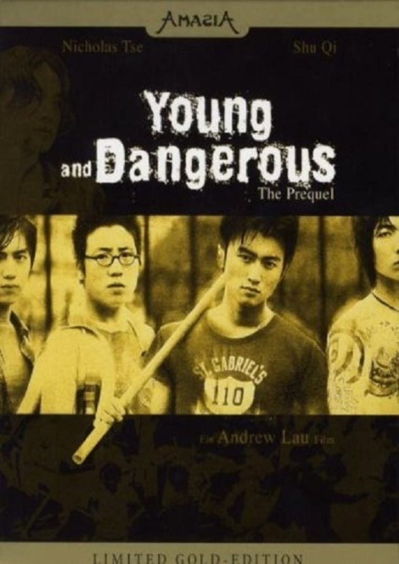 Young and Dangerous: The Prequel movie poster