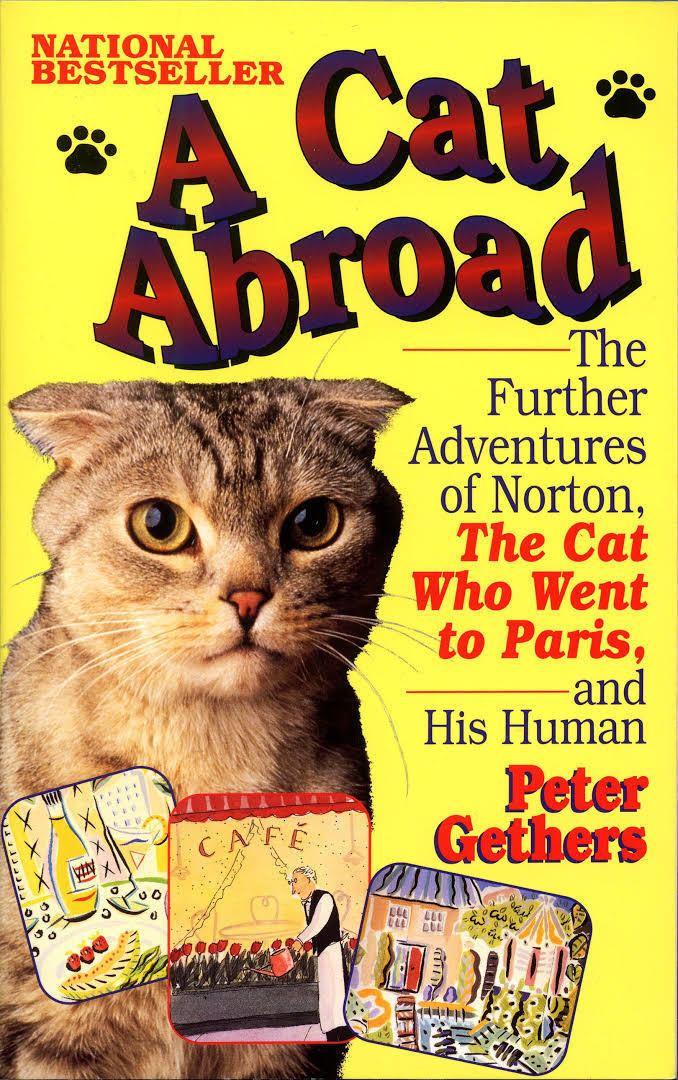 A Cat Abroad t2gstaticcomimagesqtbnANd9GcQEuJSqEqtFBnUfH