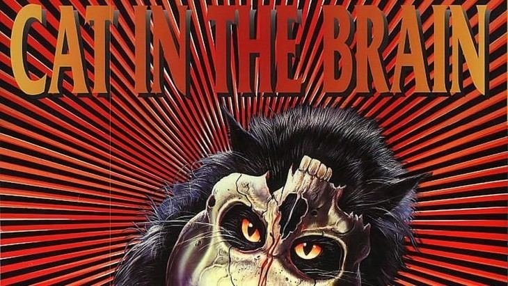 A Cat in the Brain Grindhouse Releasing Unleashes CAT IN THE BRAIN on Bluray this