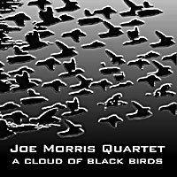 A Cloud of Black Birds wwwaumfidelitycomassetsnewassetsaum009jpg