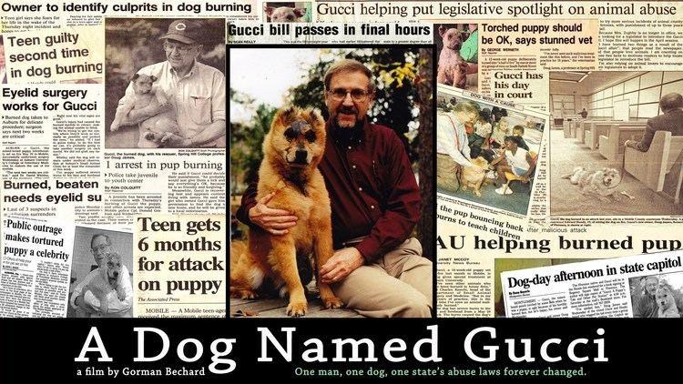 A Dog Named Gucci A DOG NAMED GUCCI trailer 1 YouTube