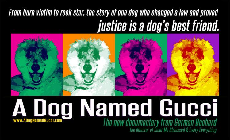 A Dog Named Gucci A DOG NAMED GUCCI