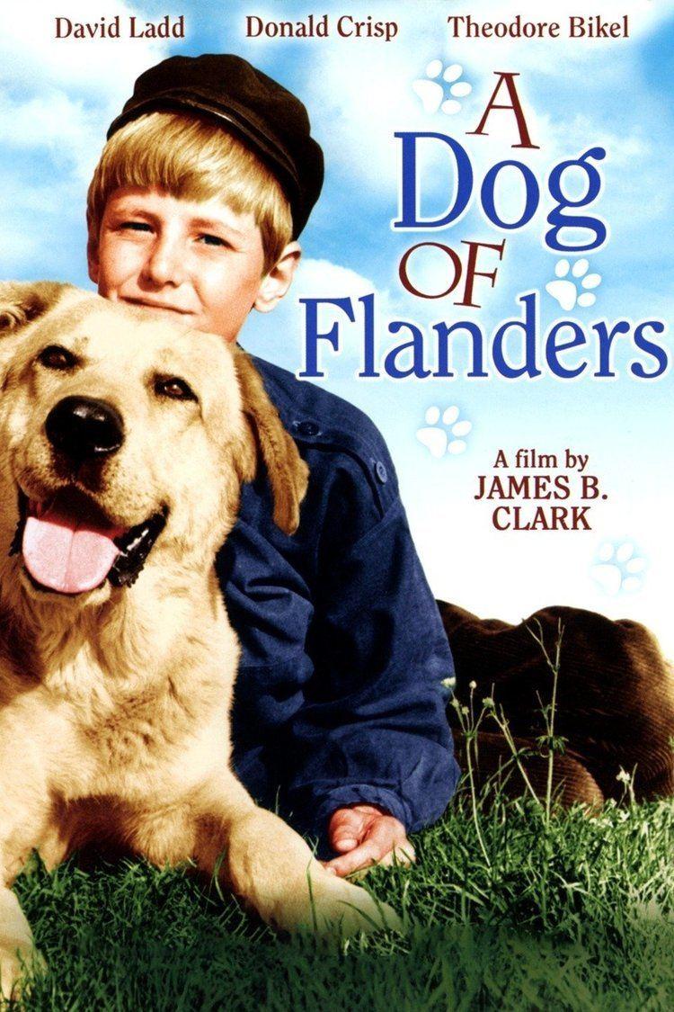 A Dog of Flanders (1959 film) wwwgstaticcomtvthumbmovieposters41783p41783