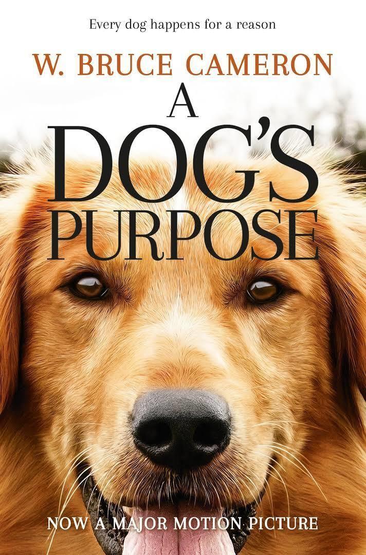 A Dog's Purpose t1gstaticcomimagesqtbnANd9GcSFlztpx9vCToui