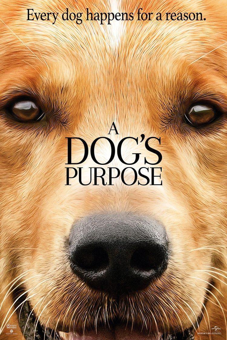 A Dog's Purpose (film) wwwgstaticcomtvthumbmovieposters12962810p12