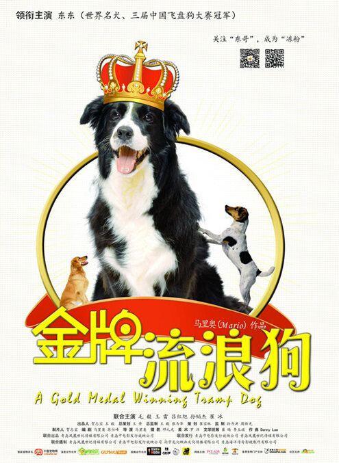 A Gold Medal Winning Tramp Dog A Gold Medal Winning Tramp Dog 2014 Dong Dong Mao Yi Lu