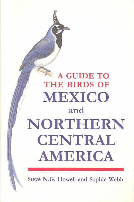 A Guide to the Birds of Mexico and Northern Central America t0gstaticcomimagesqtbnANd9GcRnWbpdU22zztH7X