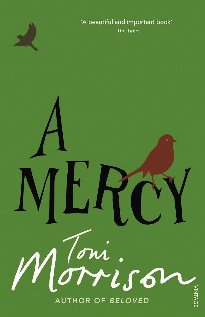 A Mercy t3gstaticcomimagesqtbnANd9GcRfKb12ff1KBfV8Wt