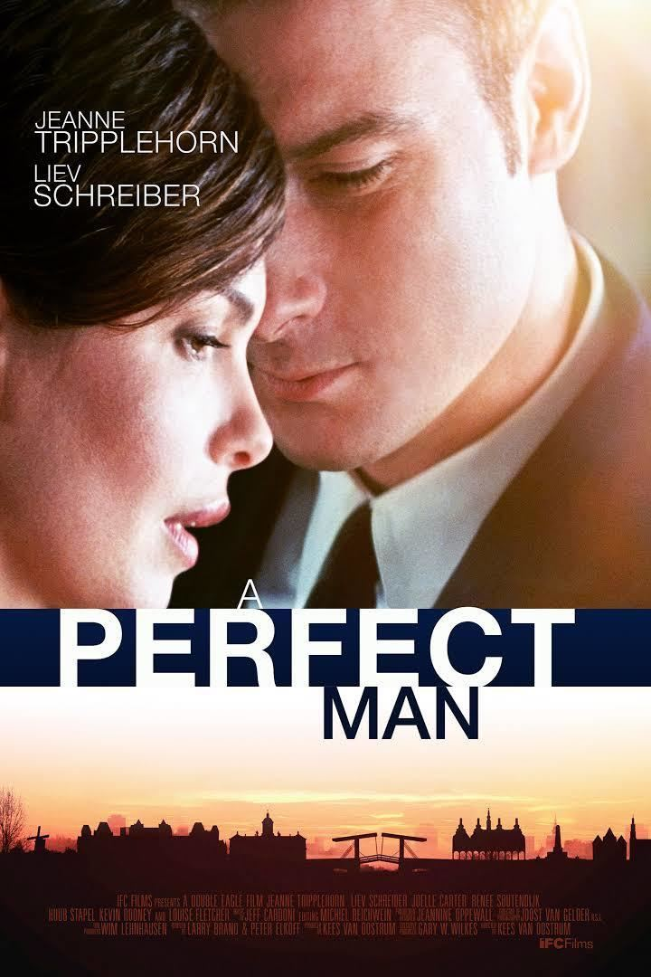 A Perfect Man (2013 film) t2gstaticcomimagesqtbnANd9GcQelSw2kXvflXaIJ
