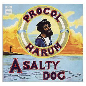 A Salty Dog httpsuploadwikimediaorgwikipediaen554Pro