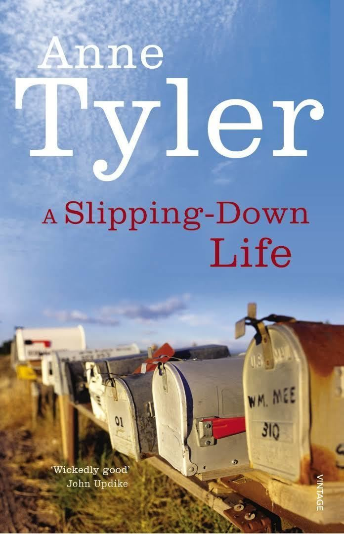 A Slipping-Down Life (novel) t3gstaticcomimagesqtbnANd9GcTqouLfSvdw5M9buT
