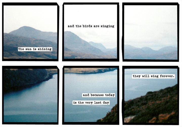 A Softer World It39s the end of a softer world An Interview with Emily Horne and