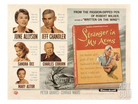 A Stranger in My Arms A Stranger in My Arms 1959