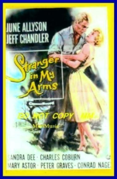 A Stranger in My Arms A Stranger in My Arms 1959 Movie on DVD Classic Movie Love
