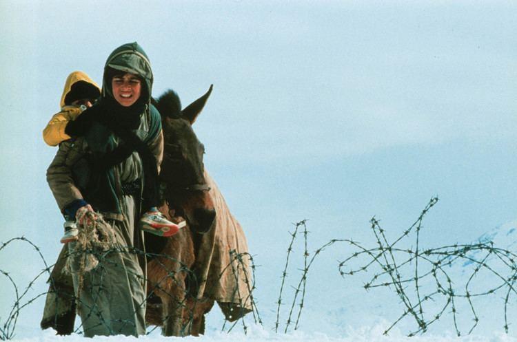 A Time for Drunken Horses A TIME FOR DRUNKEN HORSES Troms International Film Festival