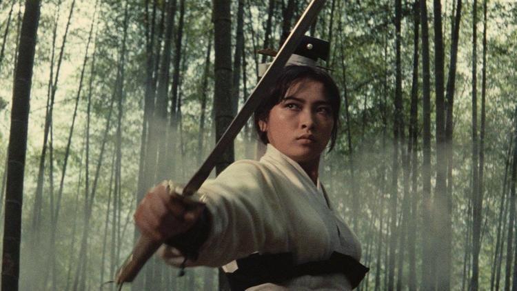 A Touch of Zen httpsassetsmubicomimagesfilm3494imagew12