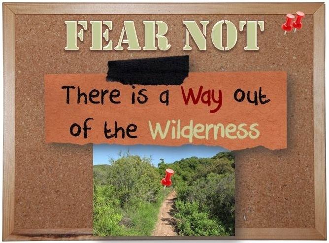 FEAR NOT There is a Way out of the Wilderness Reflections in The WORD