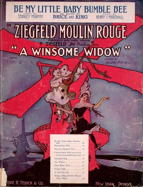 A Winsome Widow