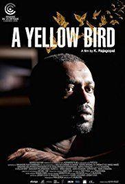 A Yellow Bird httpsimagesnasslimagesamazoncomimagesMM