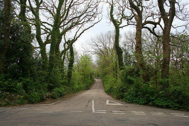 A3110 road