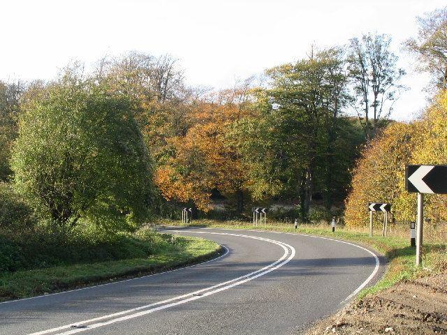 A339 road