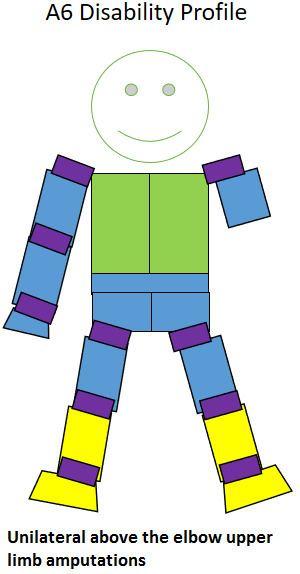 A6 (classification)