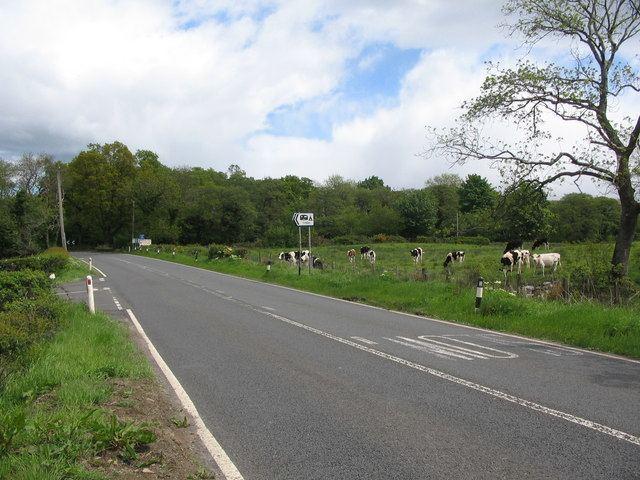 A811 road