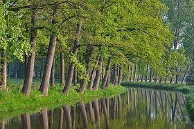 Aa (Meuse) httpsuploadwikimediaorgwikipediacommonsthu