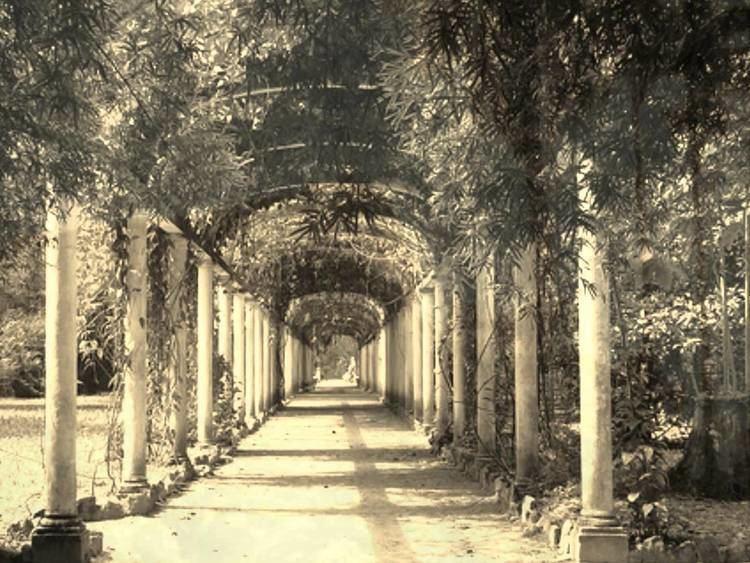 Abandoned Garden httpsiytimgcomviAWuCHhivljomaxresdefaultjpg