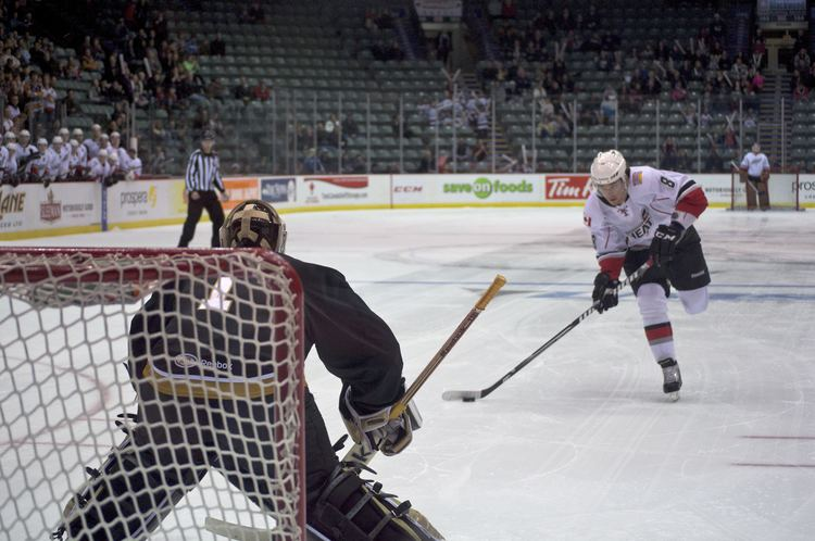 Abbotsford Heat Photo gallery Abbotsford Heat vs Texas Stars Pucked in the Head