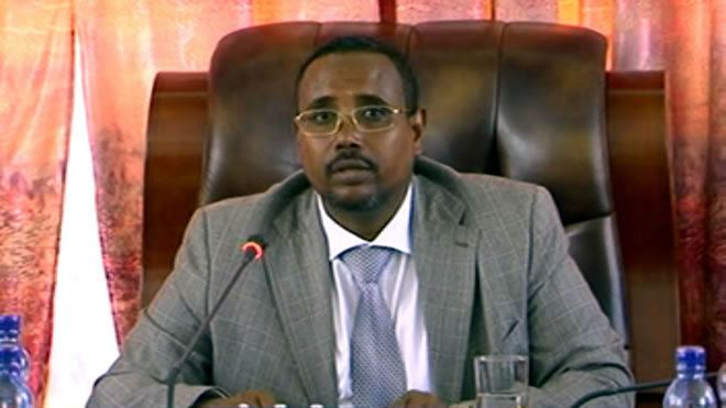 Abdi Mohamoud Omar A Triumph of Hope Over Fear President Abdi Omars Vision for