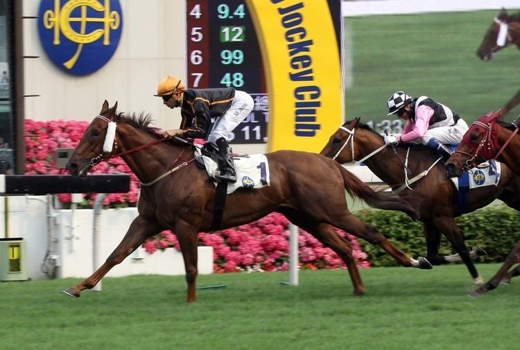Able Friend MOREIRA VERSUS PURTON AND HONG KONG39S ABLE FRIEND Fasttrack