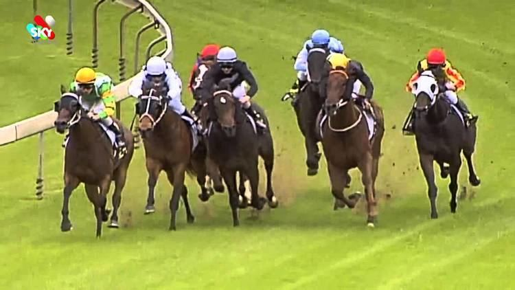 Able Friend Able Friend breaks maiden at Wyong YouTube