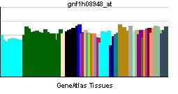 ABRA (gene)