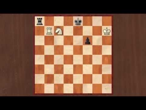Abram Gurvich Chess Study 4 Abram Gurvich 1962 YouTube