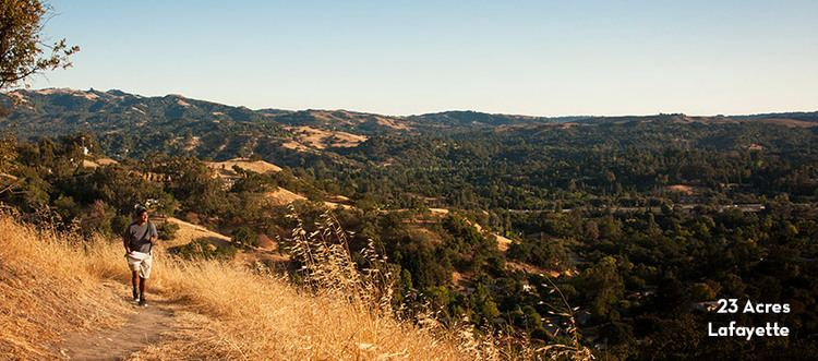 Acalanes Ridge, California wwwjmltorgimagespropertyAcalanesRidgejpg