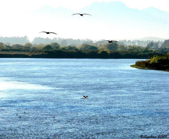 Aconcagua River wwwfotothingcomphotosa26a2615e82c8768b339730e