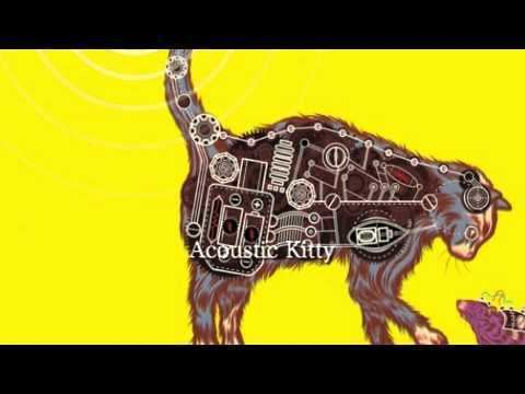 Acoustic Kitty Acoustic Kitty YouTube