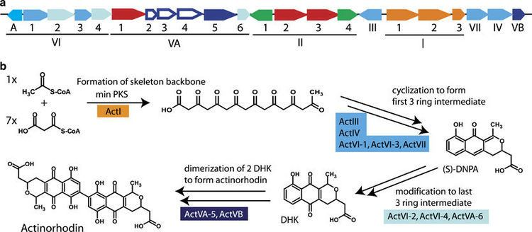 Actinorhodin The Journal of Antibiotics Figure 2 for article Towards a new