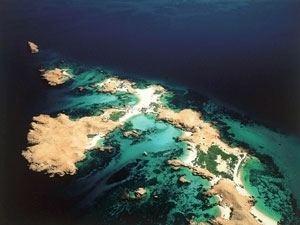 Ad Dimaniyat Islands imagesmemphistourscomlarge951852858dimaniyatjpg