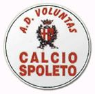 A.D. Voluntas Calcio Spoleto httpsuploadwikimediaorgwikipediaenee2Vol