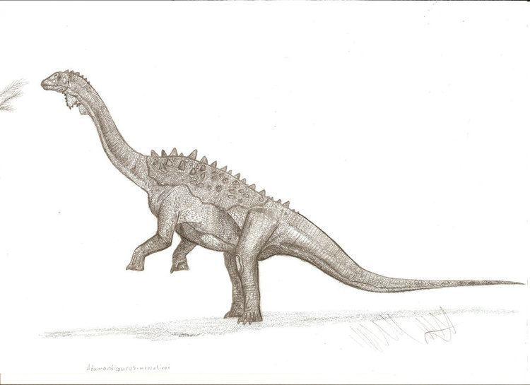 Adamantisaurus adamantisaurus DeviantArt