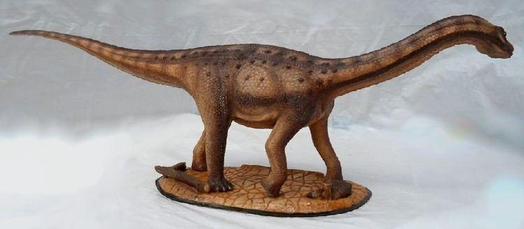 Adamantisaurus Adamantisaurus Pictures amp Facts The Dinosaur Database